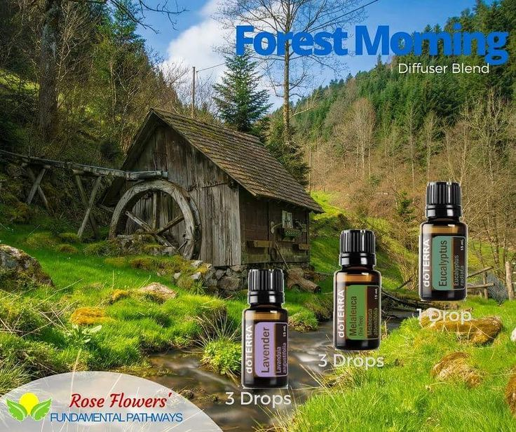 Diffusing this trio of oils makes me feel like I am walking through a forest first thing in the morning. Smells amazing and makes me feel just completely calm and wanting to take a nap. #essentialoils #diffuserblend