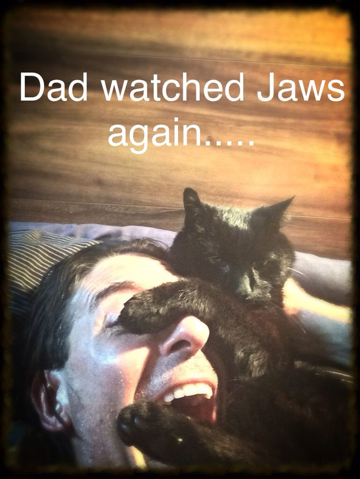 Everytime The Dad watches Jaws, I have to be that Naked Chicky Swiming girl and Lord Ohhh Myyyy.... he starts chomping away at me like that stupid Fish !!!! I m gonna get that shark thing for lunch !!!