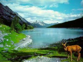 Blue Lake Mountains Nature wallpaper