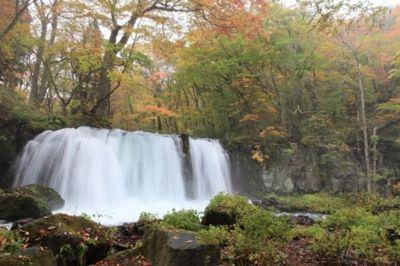 奥入瀬渓流(雲井の滝~子の口)の紅葉