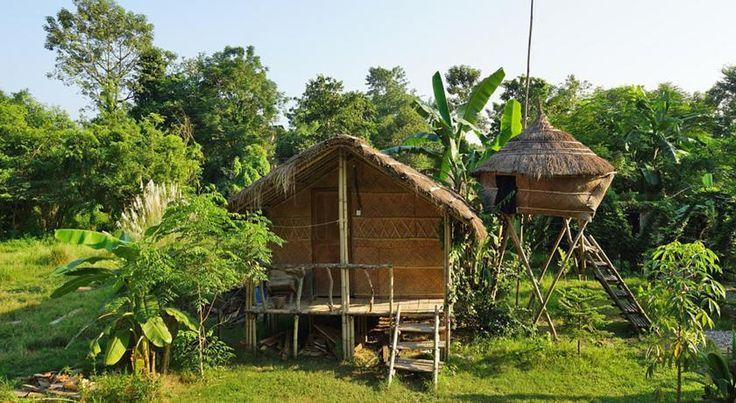 Booking.com: Evergreen Ecolodge , Sauraha, Nepal - 17 Opinie Gości . Zarezerwuj hotel już teraz!