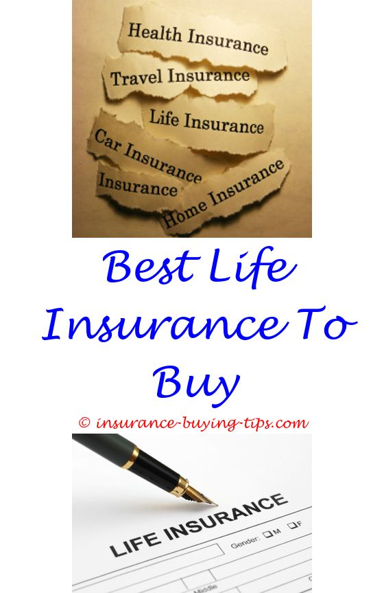 535 best Buy Auto Insurance line With Checking Account images on