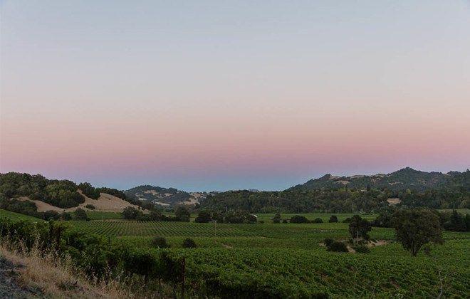 Interior Monologue - Singlethread Farm - Sonoma Valley