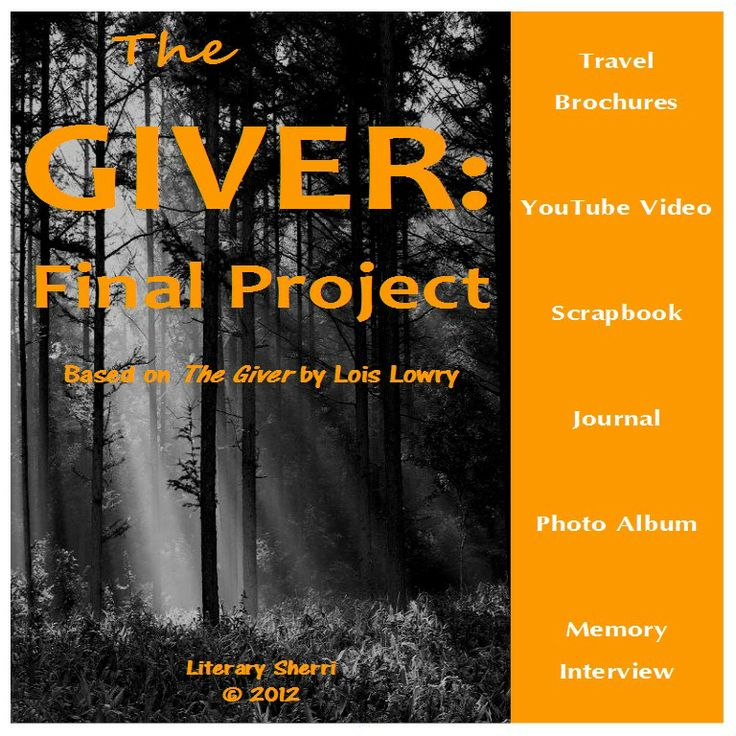 Book the Giver Essay