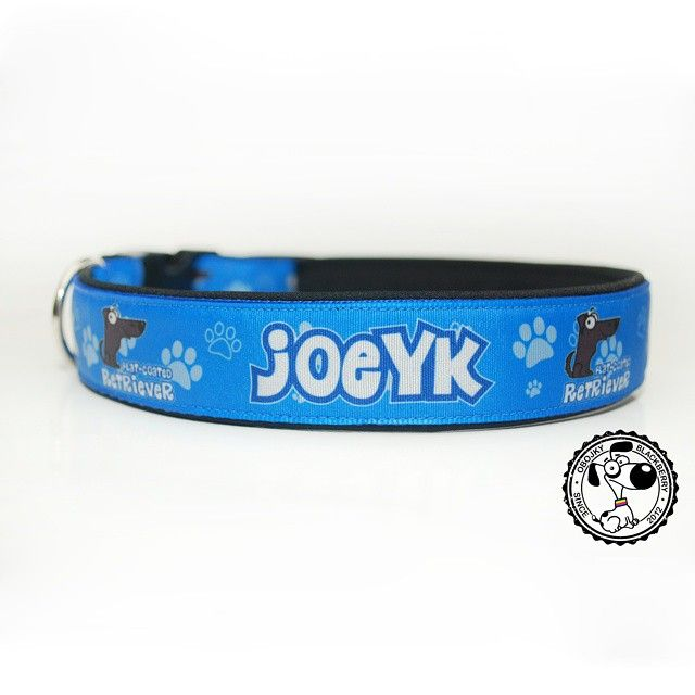 Obojek s grafikou od Blackberry | Collar with graphic by Blackberry #joeyk #flatcoatedretriever #retriever #collar #newcollar #obojek #novyobojek #byblackberry #goodsfordogs #nice #bluecolor #blue #odblackberry #vecipropsy #krasny #modrabarva #modra #news #novinka #blackberrycollars #obojkyblackberry #design #collarwithname #designovy #obojeksejmenem #dog #name #jmeno