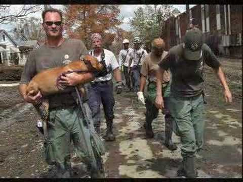 Hurricane Katrina Animal Rescue, A lot of people worried about their pets and some were  reunited with theirs after the animal rescue came....