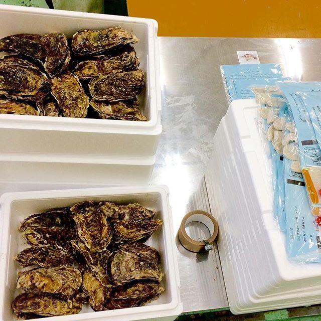 【nerihiko】さんのInstagramをピンしています。 《個人宛やふるさと納税の出荷。昨日の有吉の夜会効果で、広田湾産牡蠣の出荷いきなり増えたりしないかな。(そう簡単にはいかない) #マルテン水産 #広田湾 #陸前高田 #小友町 #両替漁港  #牡蠣  #牡蠣養殖 #養殖いかだ #海 #船 #oyster #Rikuzentakata #Hirotabay #instagood #sea #Maruten #個人宛の出荷 #ふるさと納税 #牡蠣ナイフと手袋付き #テレビ番組 #有吉の夜会 #阿部サダヲの牡蠣の食リポ #おいしそうだった》