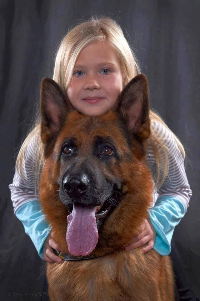 1000 Images About German Shepherds And Human Kids On