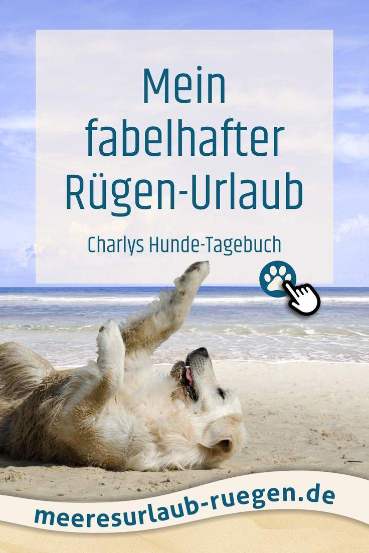 Urlaub mit Hunde an der Ostsee auf der Insel Rügen