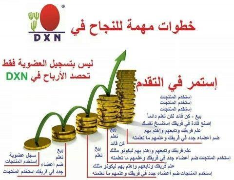 خطوات للنجاح مع شركة Dxn Place Card Holders Cards Card Holder