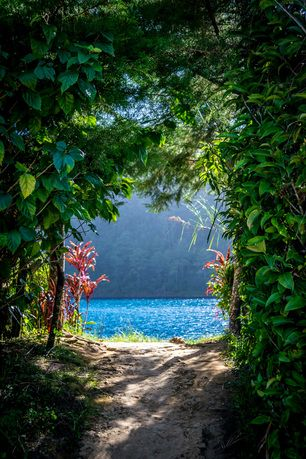 Lagunas de Montebello National Park in Mexico >>> It's like talking a walk to paradise... :)