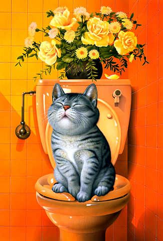 au toilette