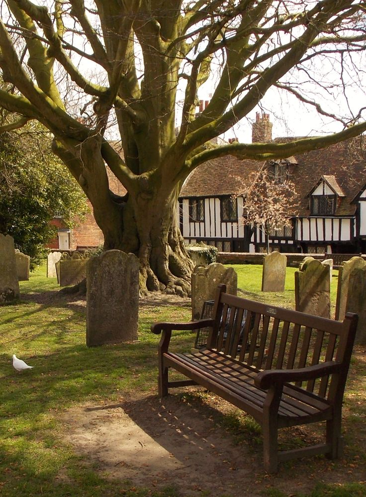 The Peaceful Place, Rye, East Sussex, England by B Lowe