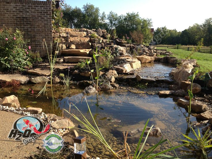 20 best pond contractor installation repair maintenance for Backyard pond maintenance