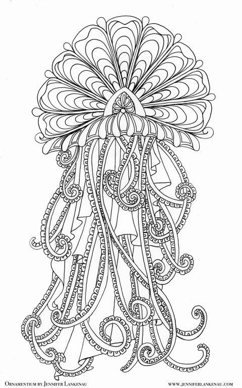 Mejores 272 imágenes de jelly fish en Pinterest | Animales, Bajo el ...