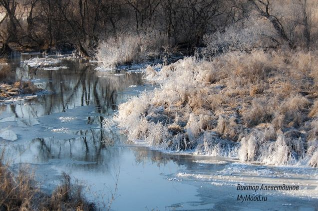 Снежное кружево предстоящей зимы так и складывается в нежно-снежные узоры и снежное настроение
