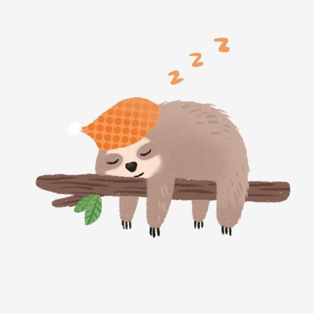 Hand Drawn Cute Sleeping Sloth Cute Clipart Sloth Hand Drawn Png Transparent Clipart Image And Psd File For Free Download How To Draw Hands Toucan Illustration Animal Clipart
