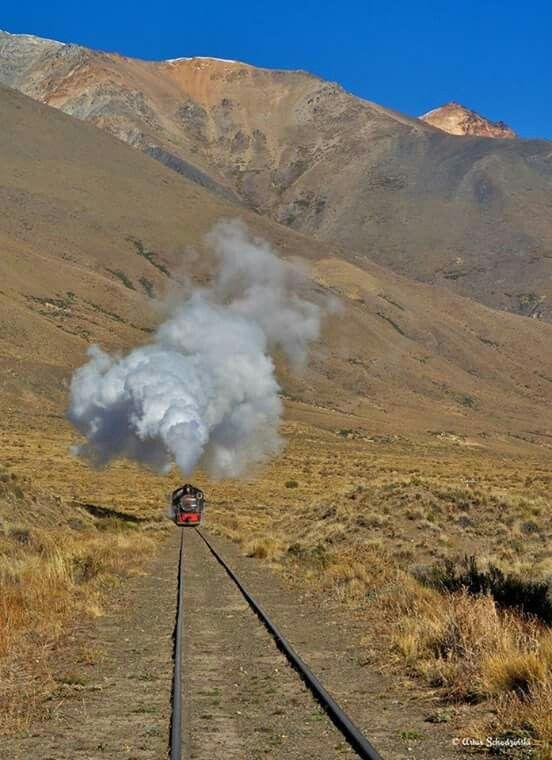 La Tronchita. Esquel. Chubut. Patagonia. Argentina