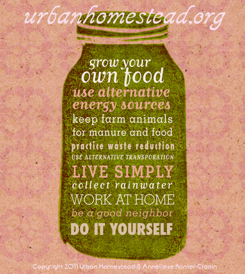 111 best design my life life coaching with suzi images on for Where to buy cheap land for homesteading