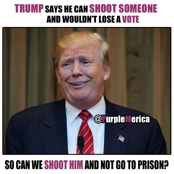 Funny Vote Trump Meme : Best images about political memes on pinterest