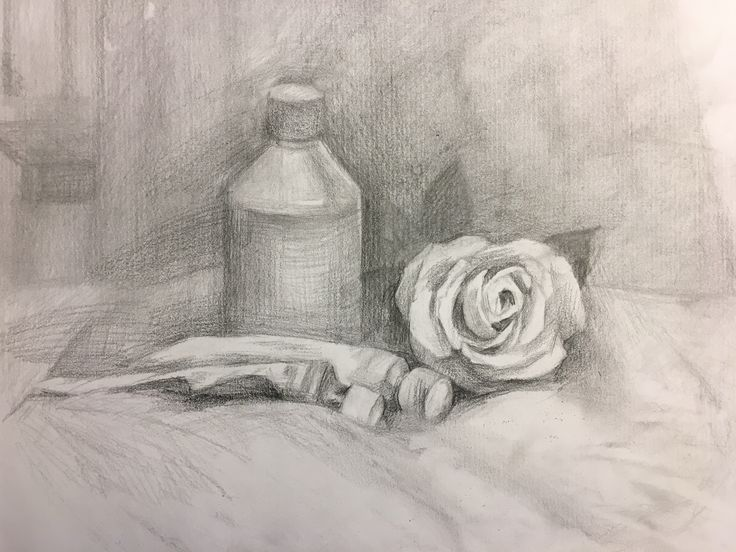 Pencil drawing of Rose, bottle and color tubes