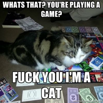 Every single time!: Games, Cat, Giggles, Funny Stuff, So True, Humor, Things, Smile, Animal