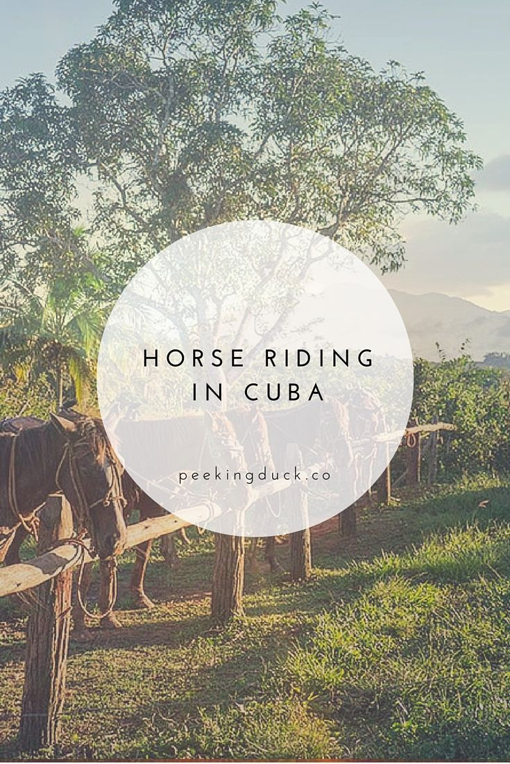 Horse riding adventures in Vinales, Cuba.