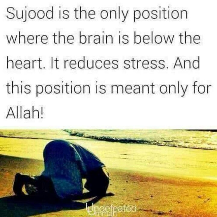 Sujood is when your #brain below your #heart. Sometimes there's unanswered things in life that only Allah Know The Answer