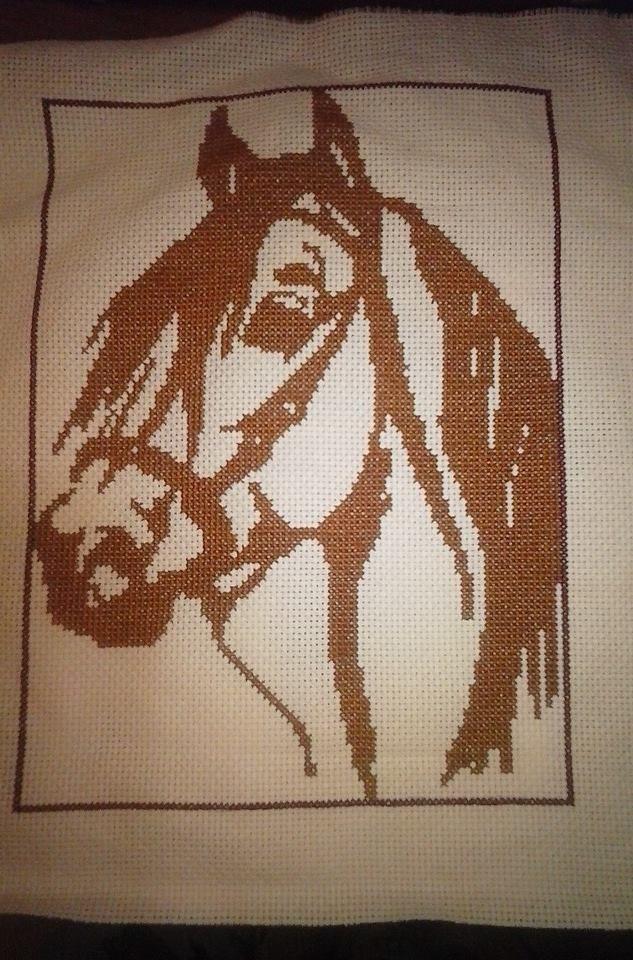 Cavallo mono
