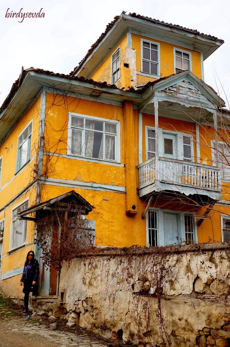 Sakarya, Taraklı evleri