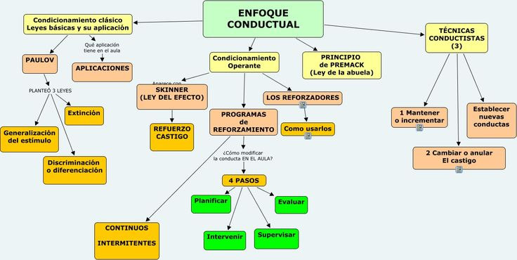 ENFOQUE CONDUCTUAL.cmap (1320×664)