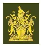 Sous-Officier / NCO   Regimental Sergeant Major