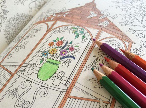My Secret Garden Coloring Book For Adults Mijn Geheime Tuin Kleurboek Voor Volwassenen