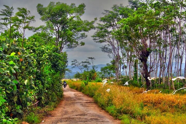 The Village at Central Java