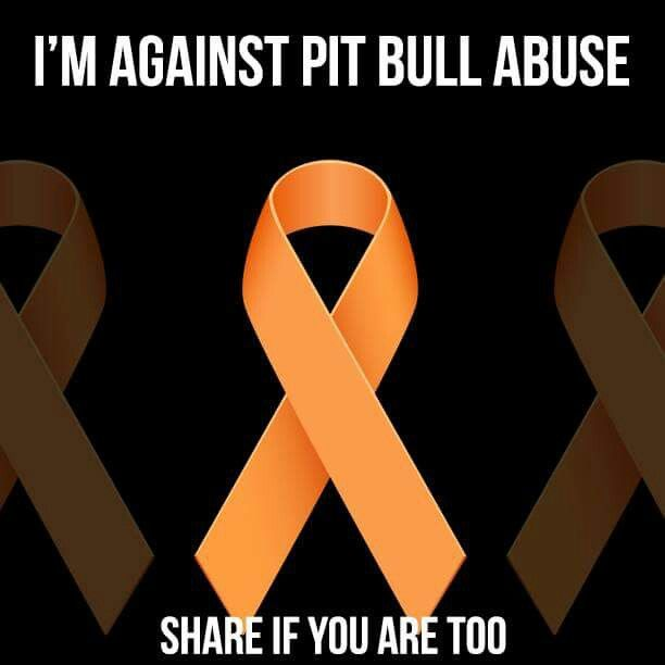 Against pitbull abuse or any animal abuse really