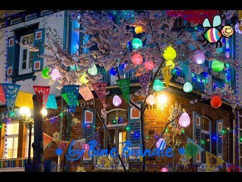 How to: leuchtende Luftballons I Bine Brändle - YouTube