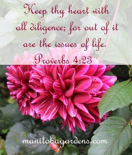 Scripture Picture Proverbs 4:23