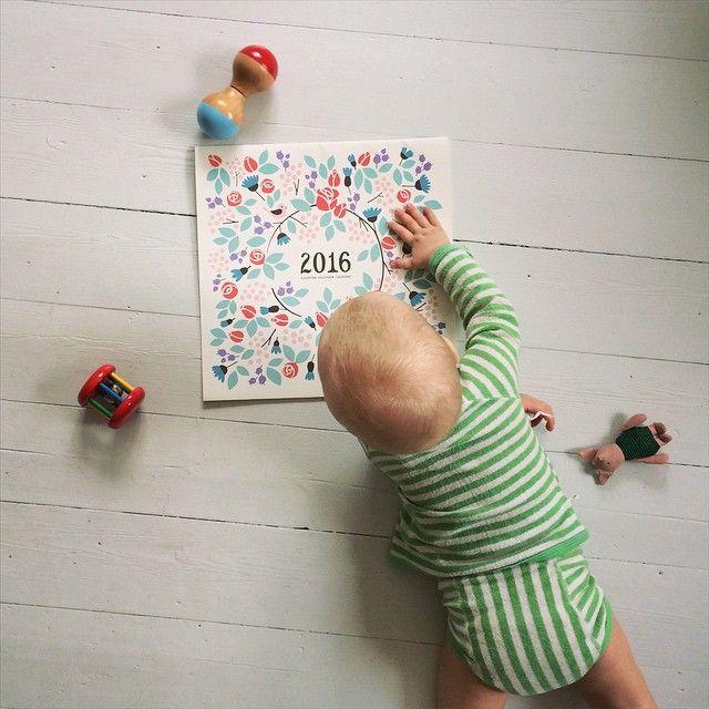 New 2016 calendars arrived! Baby Ruurik likes! #calendar #2016 #new #wallcalendar #polkkajam #illustration #paper #stationery #design #cooperation #putinki