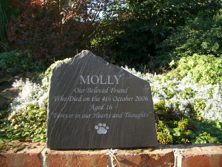 35 best pet memorials images on pinterest loss of pet pet loss i really love the look of the riven slate on this cat memorial slate is publicscrutiny Image collections