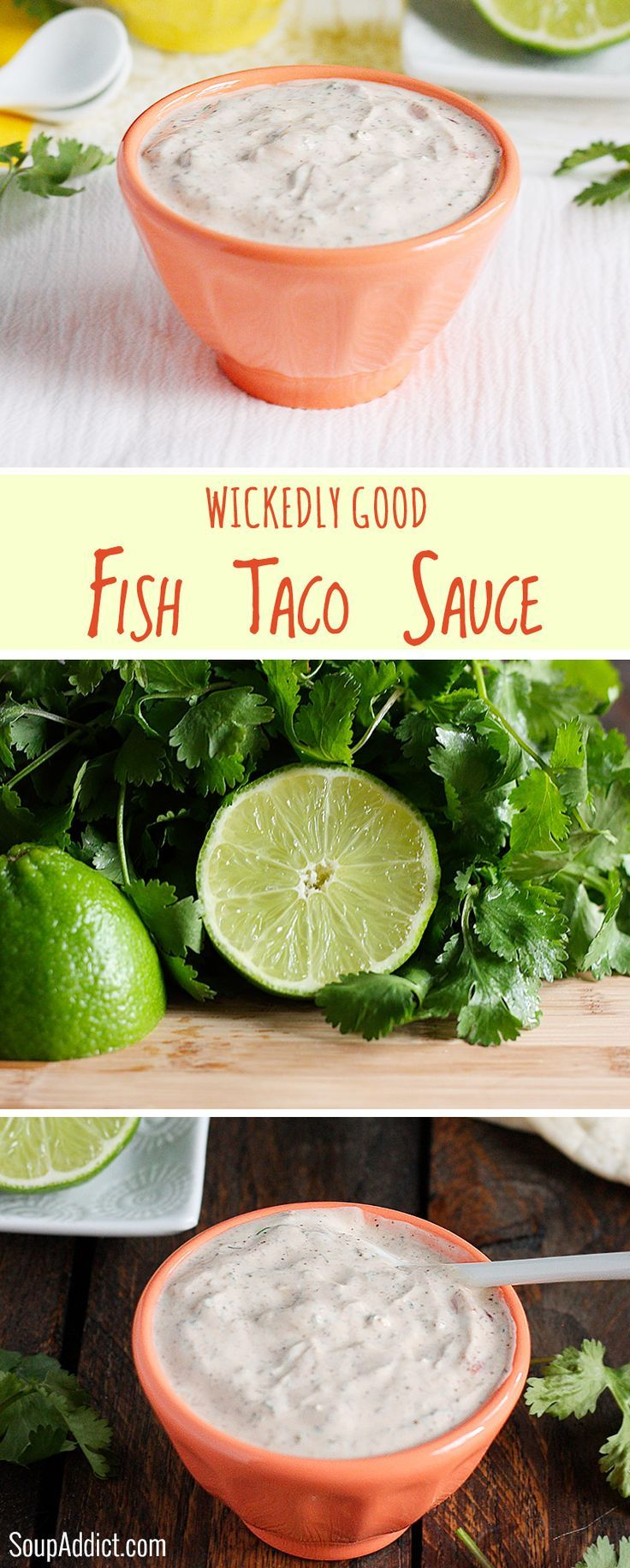 Wickedly Good Fish Taco Sauce - it's summer: fish taco bar time! And here's the best white sauce for your fish tacos. Perfectly spiced and make-ahead easy. Recipe at SoupAddict.com