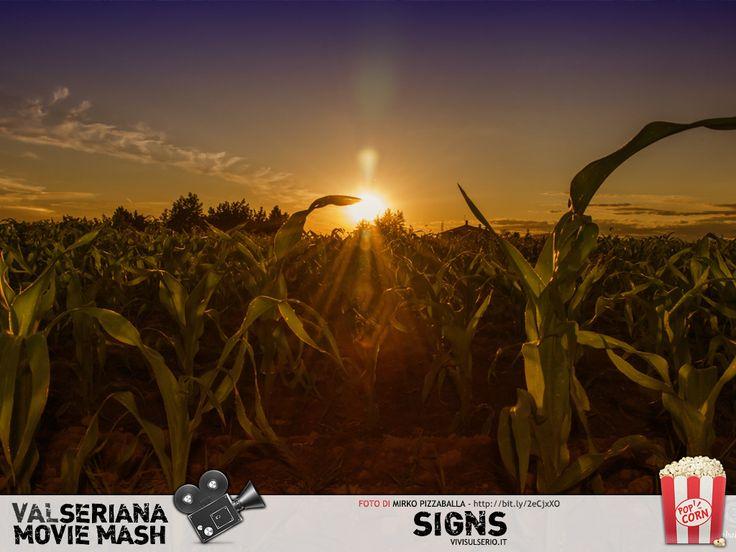 Questa bella fotografia di Mirko Pizzaballa ritrae le piante di granoturco nei campi di Levate (Bergamo). Non sappiamo se sia il particolare gioco di luce o la prospettiva, ma sembra davvero di trovarci in Pennsylvania, dove i cerchi nel grano perseguitano Graham Hess nel celebre Signs di Night Shyamalan. #Signs