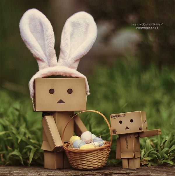 danbo | You can see many more Danbo pictures on this Flickr Group .