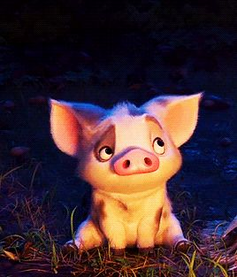 little pig friend who's already stolen my heart in Disney's MOANA