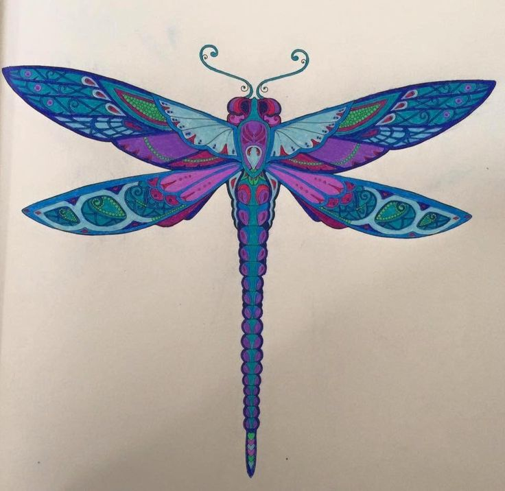 17 Best Images About Dragonflys On Pinterest