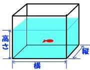 金魚病気:塩浴時の塩の量の計算【金魚屋の息子】