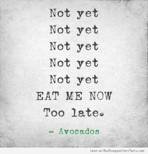 Avocados : Not Yet, Not Yet, Not Yet, Eat Me Now, Too Late