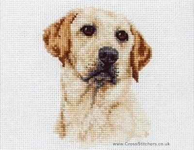 Labrador - Dog Cross Stitch Kit de Âncora