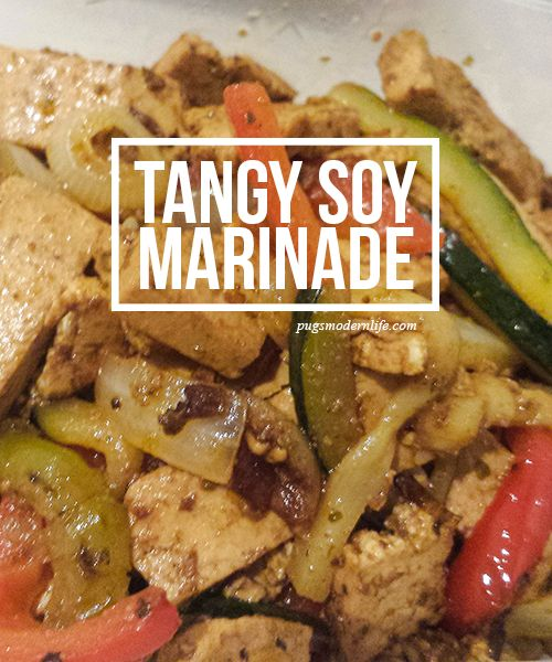 Tangy Soy Marinade (in a bag!)