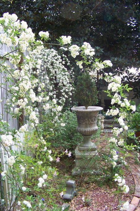 Secret Garden: 17 Best Images About Victorian Gardens On Pinterest