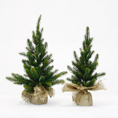 Tabletop Pine Tree in Burlap - Various Sizes